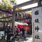國領神社の藤まつり
