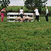 teambuilding-schapendrijven