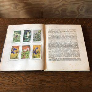 Verkade's boeken | v.a. €12,50