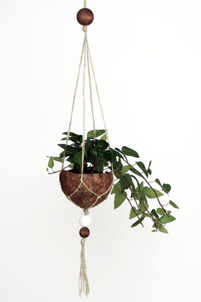 DIY Kokosnuss Makramee-Blumenampel