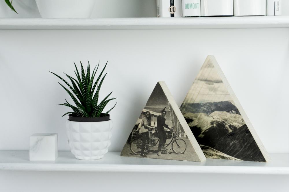 DIY Foto Transfer auf Holz für Frosch