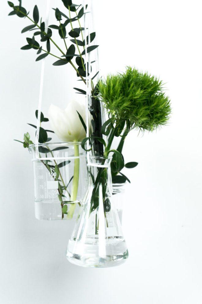 schereleimpapier DIY und Upcycling Blog aus Berlin - kreative Tutorials für Geschenke, Möbel und Deko zum Basteln - DIY Pflanzen Deko (2)