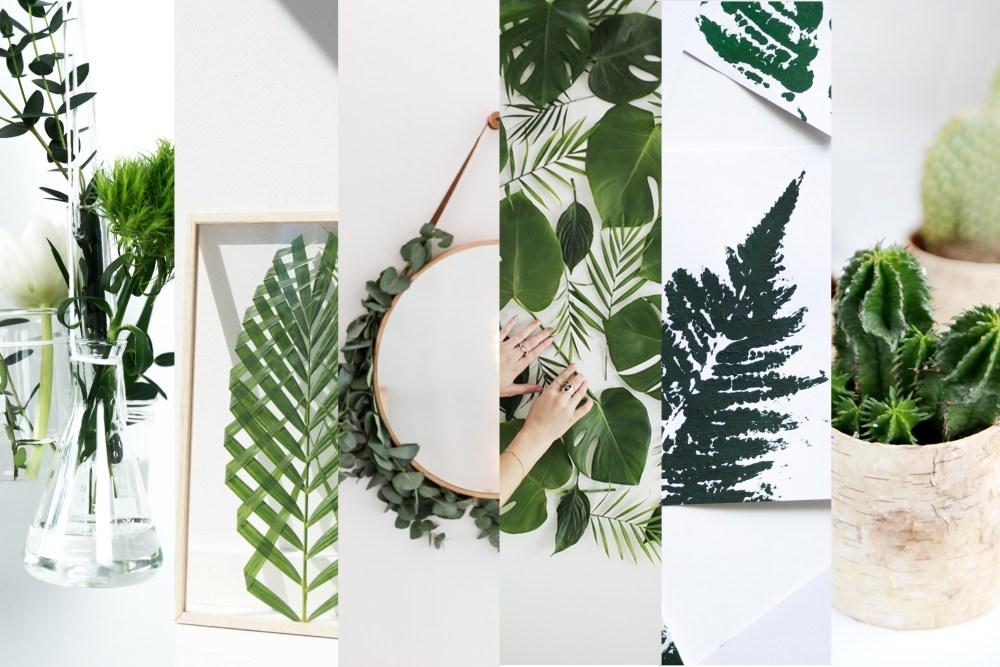 gefunden: 6 kreative ideen für pflanzen deko | schereleimpapier, Wohnzimmer dekoo