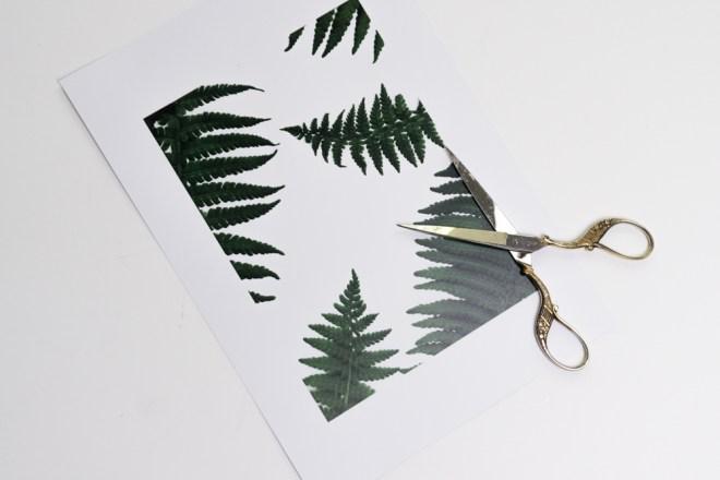 schereleimpapier DIY Blog Berlin Bild für Muttertag basteln Geschenkidee Freebie Farn Print