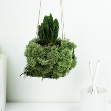 schereleimpapier DIY und Upcycling Blog aus Berlin - kreative Tutorials für Geschenke, Möbel und Deko zum Basteln - Urban Gardening DIY Deko Idee mit Pflanzen