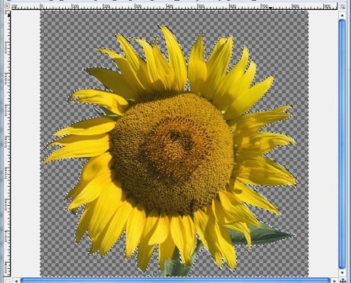 GIMP: Zauberstab-Werkzeug, Bild freigestellt