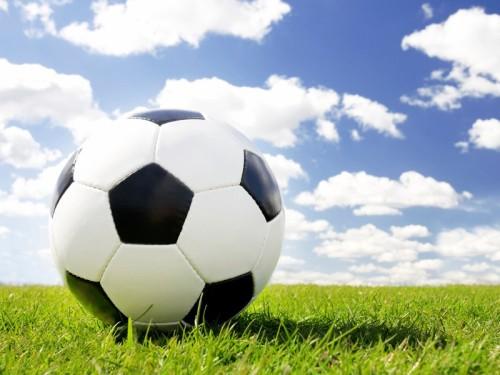 fussball-wiese