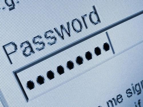 password-feld