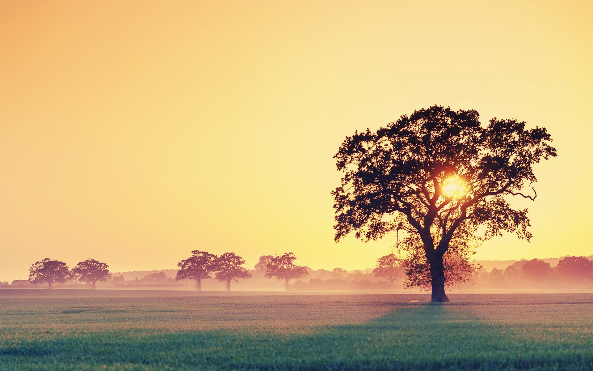 Leuchtende Farben Des Herbstes 4 Gratis Wallpaper Zum Download