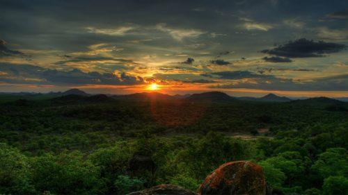 Amazon-Evening1