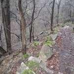 Abstieg zur Bode (Harzer Hexenstieg)