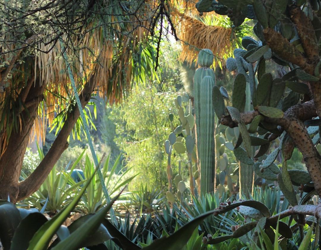 Valencia - Botanische tuin