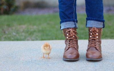 HEB HET LEVEN LIEF | 12 geluksmomenten
