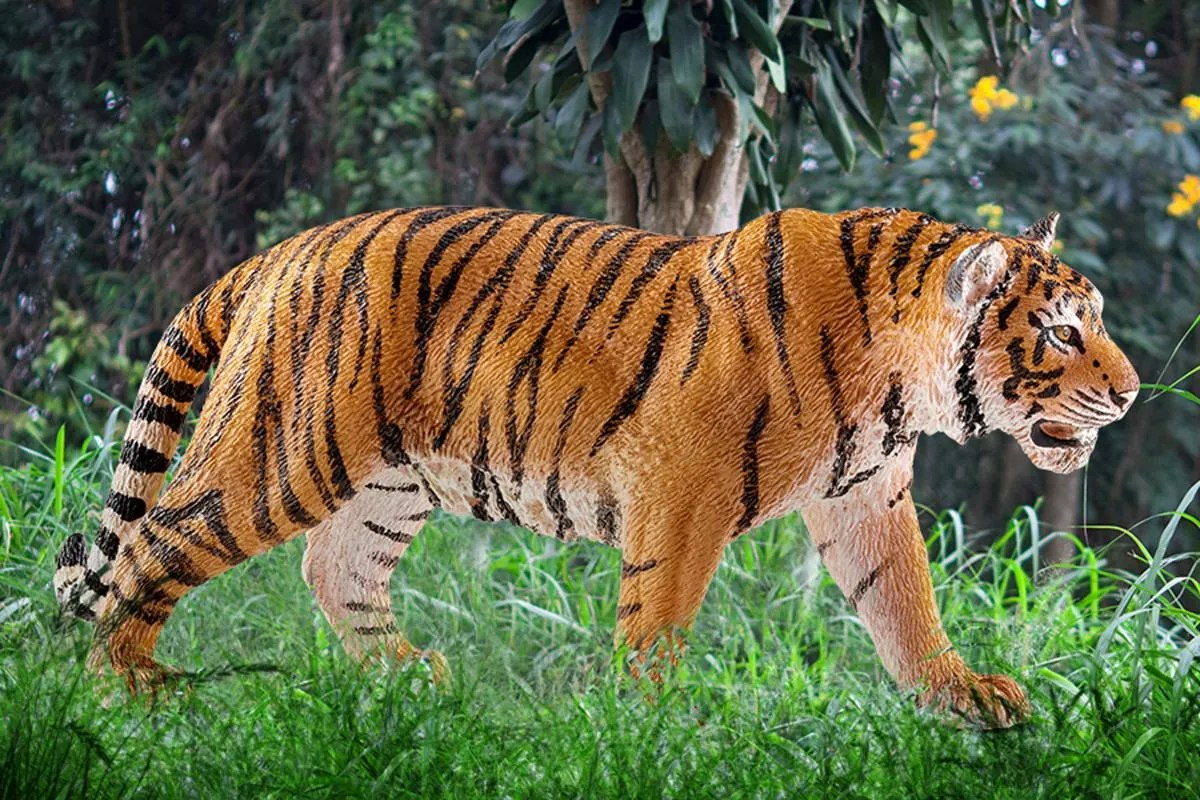 tiger 14729 wild life