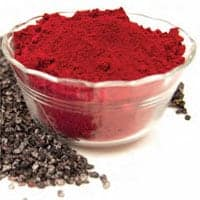 cochineal insects