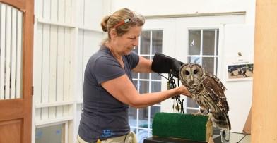 At the Mews Schlitz Audubon