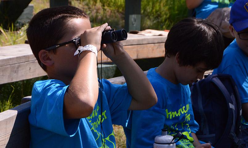 Scouting Schlitz Audubon