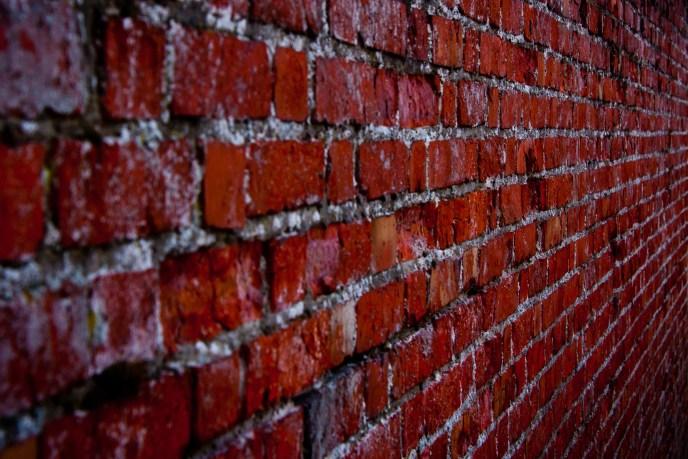 the_wall_I