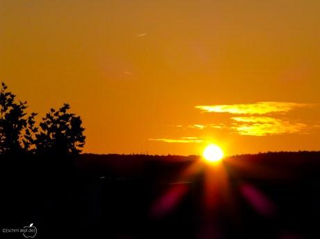 sun_rise-1