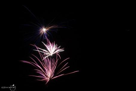 Feuerwerk_2014-1