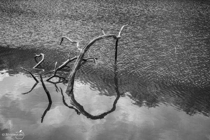 Wasserskulptur