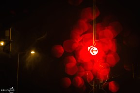 City Lights-6