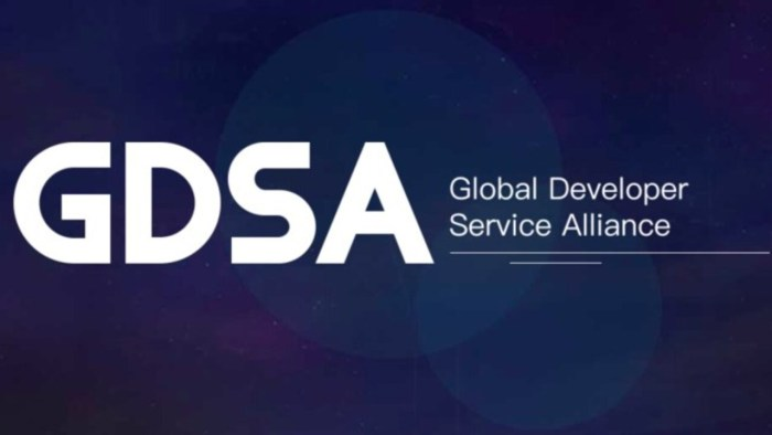Global Developer Service Alliance