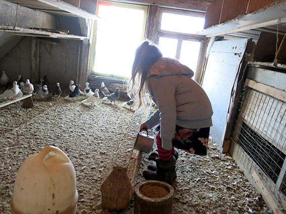 Frida füttert die Tauben