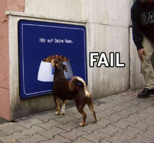 fail18_wwwschneeseicherch