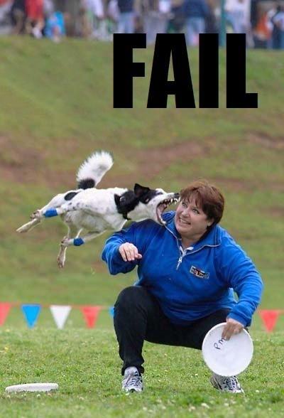 fail19_wwwschneeseicherch