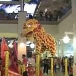 Chinesischer Neujahrstanz