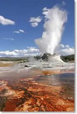 Geysir im Yellowstone Nationalpark