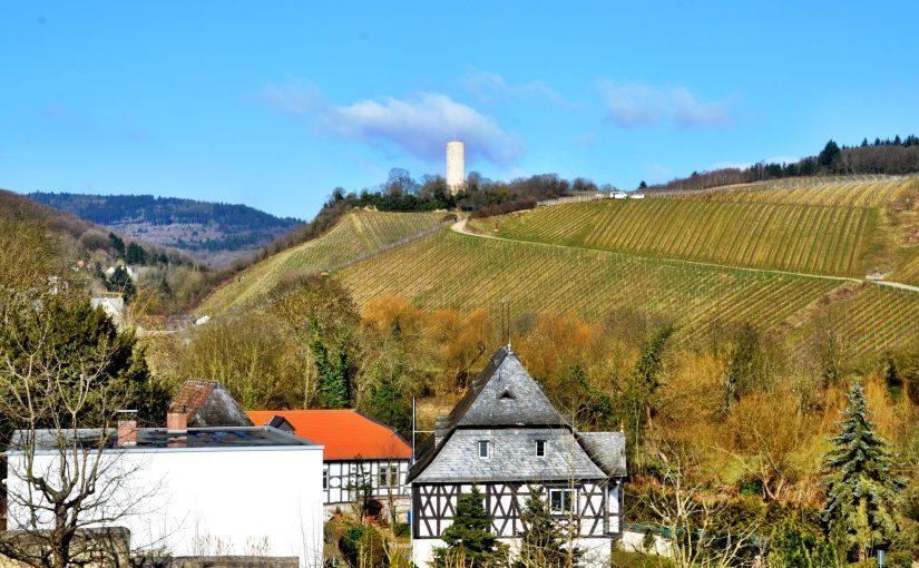 Gräfenberg und Turmberg