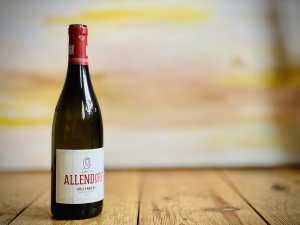 Allendorf Pinot Noir GG