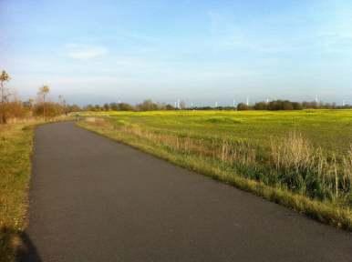 Blick auf den Radweg