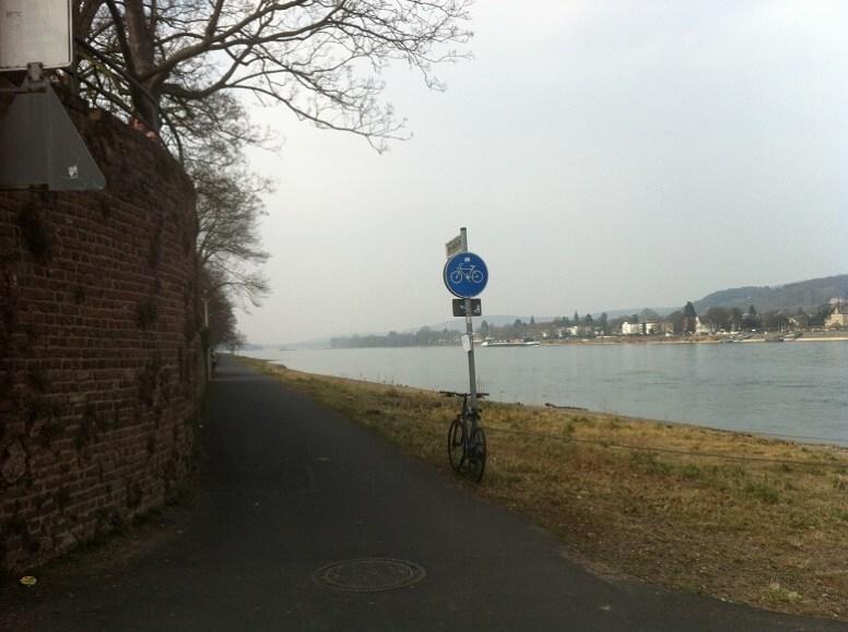 Rheinradweg bei Bonn