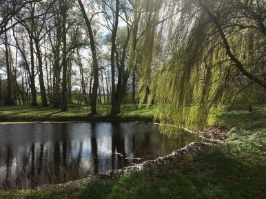 Park Viecheln