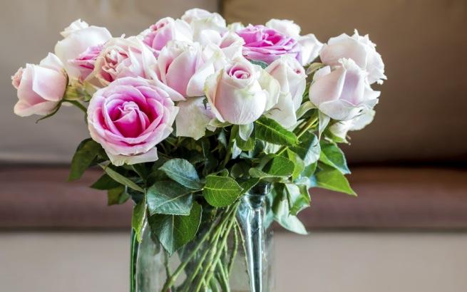 Rosen die Bedeutung der verschiedenen Farben