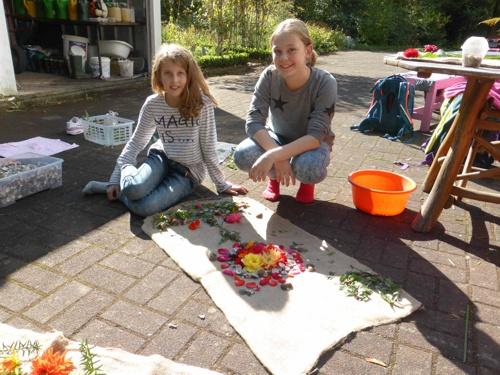 Schnsttter Marienschule Vallendar Herbstliche Bltenpracht im Schulgarten