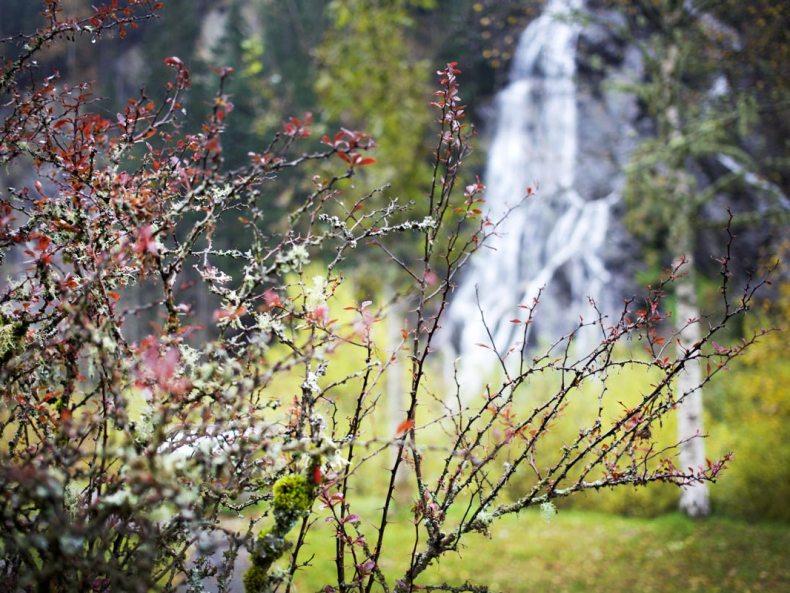 Wasserfall Herbst