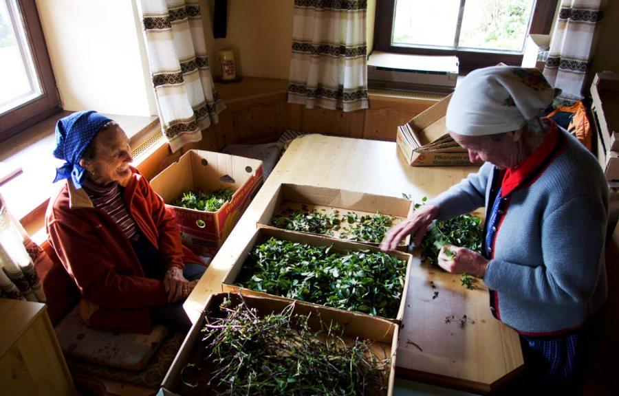 Bergbäuerinnen Kräuterbauernhof