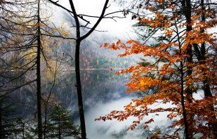 Herbst am Altaussee
