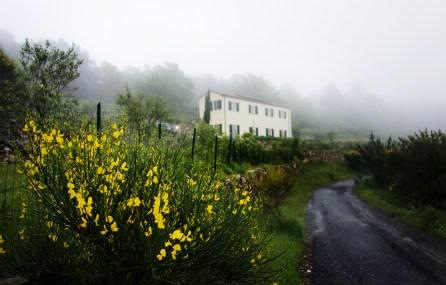 Che Bella Vista bei Nebel