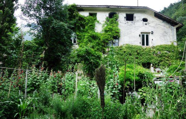 Im Garten der Platinos