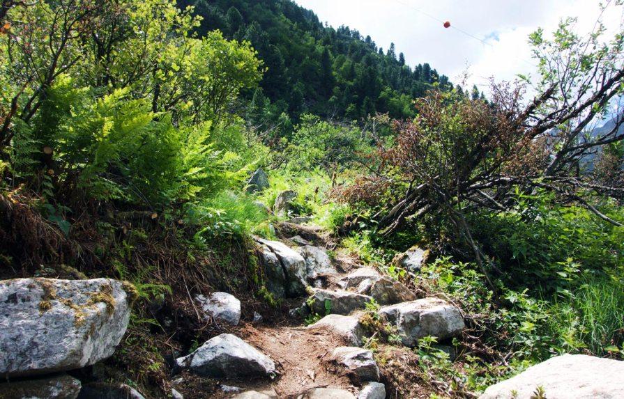 Steiniger Weg Sulzenaualm