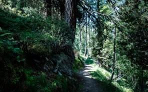 Wanderung zur Autenalm
