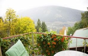 Aussicht Waldhaus Rudolphshöhe