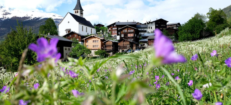 Bergdorf Ernen - Goms Wallis