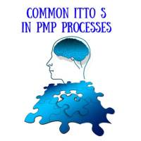 Common ITTO S in PMP Processes
