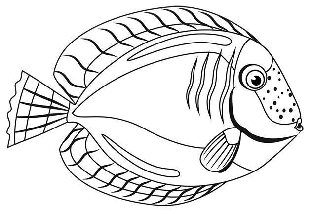 Fish 4 (b/w)
